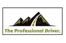 The Professional Driver and Car rent services