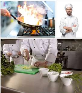 all cook/chef ,helper ,indian,chainiz,tandoor all cook chahiye