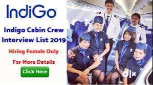 Walking Interview Air hostess Flight Loader Cargo Loader Driver 0