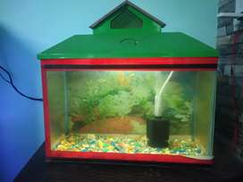 Aquarium for sale working condition filter with LED Lamp.