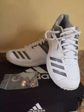 ADDIDAS ADIPOWER VECTOR CRICKET SHOES BRAND NEW WITH SPIKES