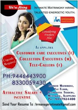 Customer Care Executive