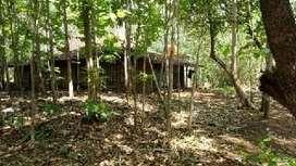 rumah dan tanah di kepoh boyolali cocok untuk investasi