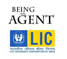 Insurance adviser in LIC