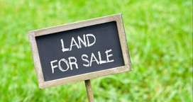 12 cent land for sale - Main Road Side -  Sullia