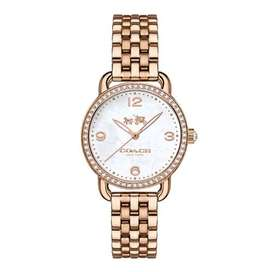 Delancey Stainless Steel and Mother of Pearl women's watch(original)