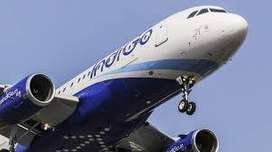 airlines job in indigo apply fast
