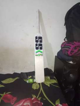 Want to sell this new ss kashmir willow bat