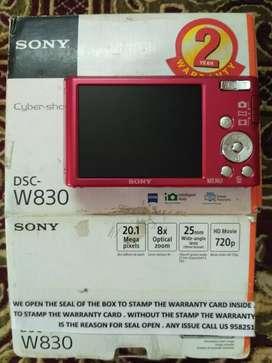 Sony CyberShot DSC W830 20.1 MP8x Zoom(Pink),10Gb Class10Memory & Case
