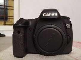Canon 6d body 1. 5 year