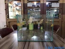 Jual aquarium aquascape rimless