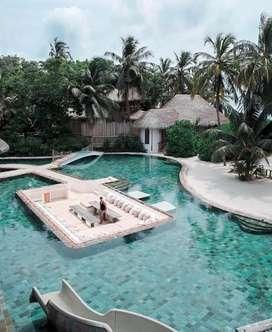 Taman dan kolam renang profesional