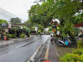 Hotel Strategis 33 Kamar di Ubud