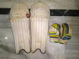 Stanford pad and gloves