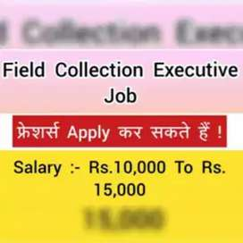 Need collection executive no target fixed salary