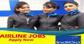 Urgent hiring on airport job