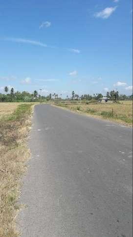 Siap Bangun Tanah di Toto Utara, Gorontalo, Sulawesi
