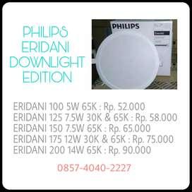 Philips LED Eridani Downlight series