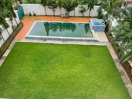 Well maintained two villas in one compound
