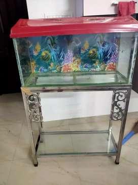 fish aquarium with SS stand