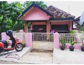 Dijual rumah kampung Porong sidoarjo siap huni