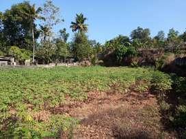 30 Cent House plot in Kurichy Mandiram, Changanacherry