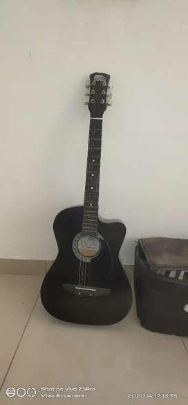 Guitar 1500