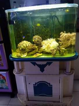 Aquarium laut lengkap beserta meja