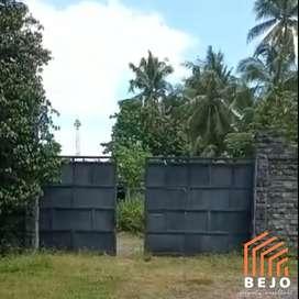 Disewakan Gudang luas murah lokasi Bantul akses Kontainer