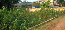 8 decimil plot for sale in Ward number 17, Near Bhanjpur