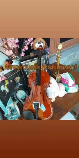 Biola greymusic seri 3286