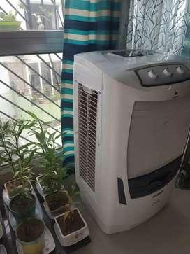 Havells water cooler, Celia