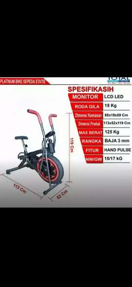 11geneng platinumbbike 2on1