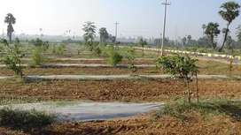 Farm Lands for sale Begumpet,chidruppa,patencheru