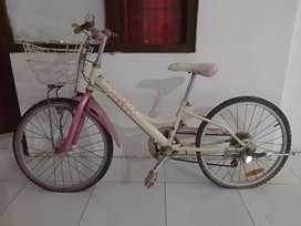 Sepeda peche ori japan