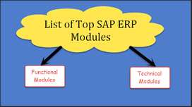 SAP F2F/Online Training by Real Time Consultants