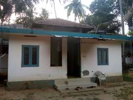 House in 8 cent land for sale at Nallalam