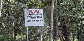 Dijual Tanah Luas 1.6 Ha Lokasi bagus di Ambal, kebumen, Jawa tengah