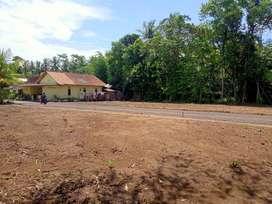 Tanah Murah di Wates Kota, Zona Pemda: Pas Buat Kontrakan