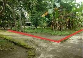 Kode : TP 1953 #Tanah Pekarangan Bagus Murah di Kalasan Sleman Yogyaka