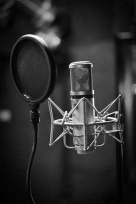 Voiceover service Available