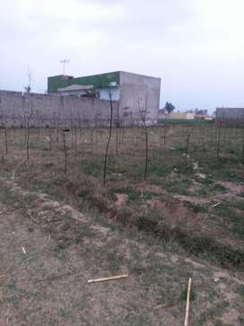 Plot for sell kotha