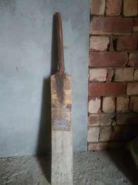 Nice bat for cricket