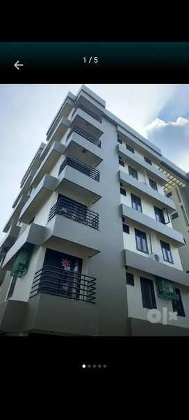 2/3/4 bhk flat and house villas for rent kanjikuzhy