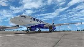 Urgent Hiring For Goa Airport