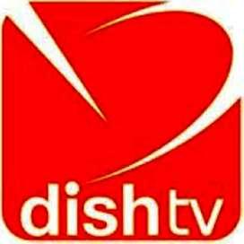 DishTV process urgent vacancies