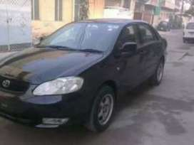 Car with driver for rent