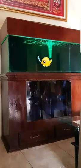 Aquarium full set