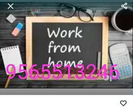 DATA ENTRY PROCESS: - This is a data work company which provides PDF