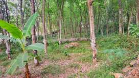 Plot for sale.Total 1.50 acres ,will be available in total or by plots